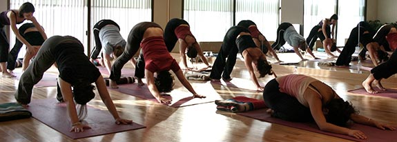 Montreal Yoga Studio - Workshops